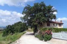 bnb-casetta-huis